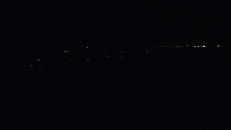 Knicklichter im Dunklen